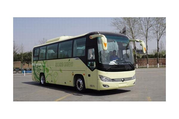 宇通ZK6906BEVQY51客车(纯电动24-39座)