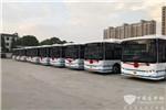 安徽太湖新能源公交初体验,金龙助力传统公交企业转型