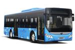 宇通ZK6125BEVGQAA公交车(纯电动10-49座)