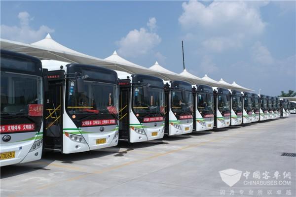 浙江舟山:105辆新能源公交车安上了专用车牌