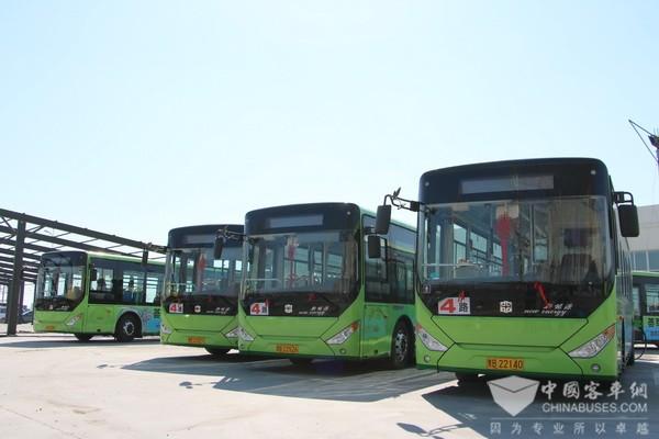 """河北:中心城区全面步入""""绿色公交""""时代"""