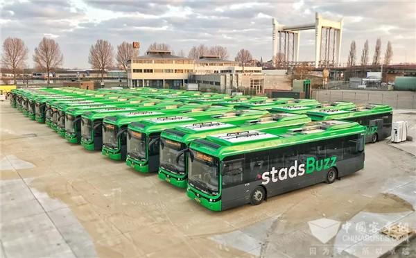 挺进国际高端市场 潍柴丰泰客车斩获荷兰客户百台订单